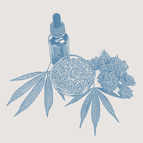 CBD Oil bottle with hemp leaves and seeds
